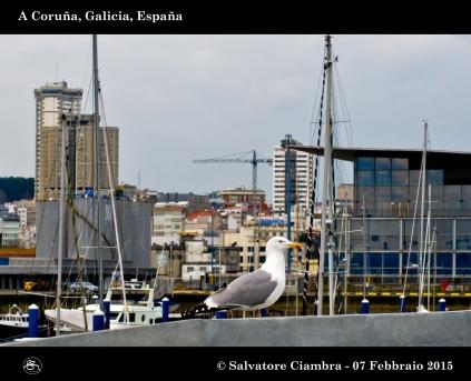 _D7C5711_bis_Coruña_febbraio_2015